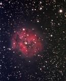 IC 5146 - La Nébuleuse du Cocon