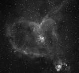 IC 1805 La Nébuleuse du Coeur - The Heart Nebula