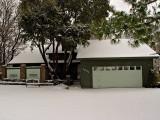Snow Feb 2011