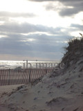 MA coastal dunes