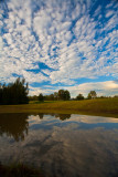 Reflection of clouds in dam at Thistle Hill, Pokolbin