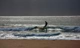 Surfer panorama