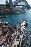 Sydney Harbour Bridge and crowd at freedom of arts demonstration