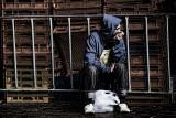 Man sitting next to crates