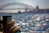 Sydney Harbour Bridge backdrop