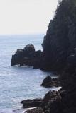 Quoddy Head shoreline