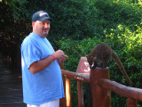 Frank feeding a White-nosed Coati