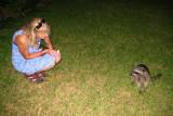 Julie feeding the racoon