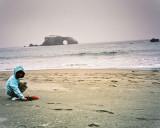 Sonoma Coast Beaches
