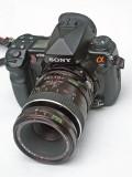 80mm Macro 004.jpg