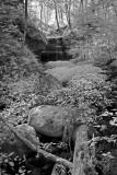 Falls Near Copas 397.jpg