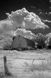 Scandia Farm 0330.jpg