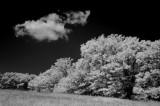 Cumulus 00575.jpg