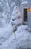 Snow Entry 3649.jpg