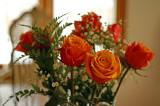 Roses 8415.jpg