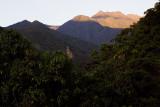 Manu cloud forest