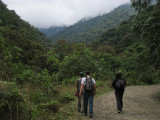 exploring the Manu Road