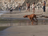 Meile 8 mo. at Avila Beach