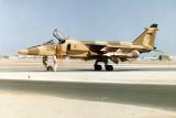 Omani Jaguar