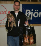 Morritz has just won the Ocicat-Special show, He was selected BEST OCICAT OVERALL!!!