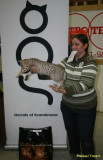 Me and Amos - in the ocicatspecial he won the class Best Body only 7 month old! :)
