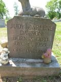 Born & Died Dec 13, 1955  Our Darling