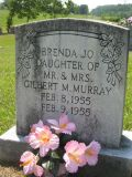 Daughter of Mr & Mrs Gilbert M. Murray Feb 8, 1955 Feb 9, 1955