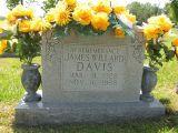 In Remembrance James Willard Davis Mar 31, 1928 Nov 16, 1988
