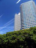 Tokyo (31).JPG