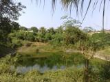 001_Potramarai Pushkarini.jpg