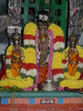 Mylapore Adikesavan on MM sattrumarai day.jpg
