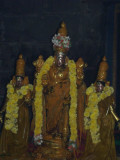 2.Vijayaragavan_Manjanamadal.jpg