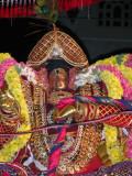 KUDHIRAI VAHANAM - perumal closeup