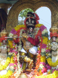 6th day venugopalan Thirukolam_Chapparam3.jpg
