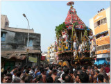 7th day - thiruthEr in thiruvEEdhi1.jpg