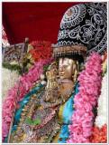 2-Udayavar close up shot - 2nd day-2.jpg