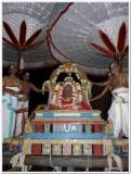 6-Udayavar Utsavam - 6th day evening - mangalagiri vahanam3.jpg