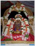 6-Udayavar Utsavam - 6th day evening close up shot.jpg