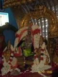 Devarajan_sesha Vahanam3.jpg