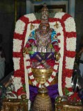 5th day night - patthi ulAthal - yOga narasimhar thirukOlam - close up shot.jpg