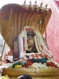 srijayanthi-2009