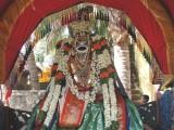 NaathaMunugal - 5th Day Purpaadu Morning.jpg