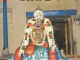 Nathamunigal during TiruvaiMozhi Sevai-5th Day.jpg