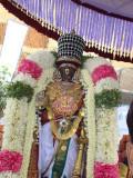 Sri Parthasarathy Svami kODai Utsavam