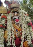 Nam Aalavandaar during Mangalasaasanam.JPG