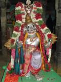Perumal Garuda Sevai on Aacharyan Tirunaksatram.JPG