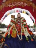 Sri Aalavandar -9th Day Purapaadu.JPG