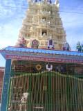 nandana_azhwar_thirunagarii_pavitrhothsavam