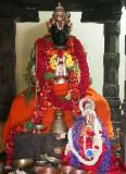 Nandana Srimath Adivan Sathakopa Yatheendra Mahadesikan Thirunakshkatram - thirunArAyaNapuram
