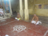 Sri Dheivanayakan swami leading the gosthi at sriperumbudhur